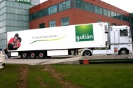 GULLON 2
